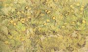 A Field of Yellow Flowers (nn04), Vincent Van Gogh