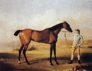 George Stubbs Molly Longlegs with Jockey oil painting on canvas
