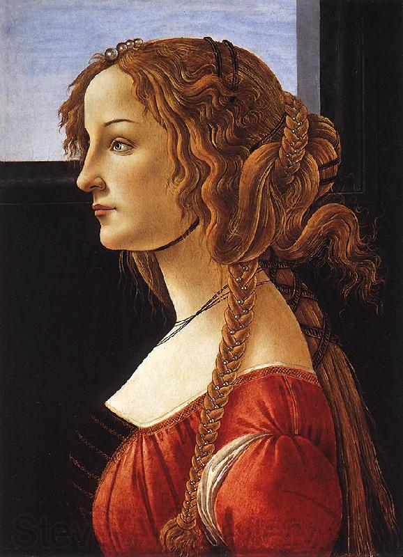 BOTTICELLI, Sandro Portrait of a Young Woman 223ff
