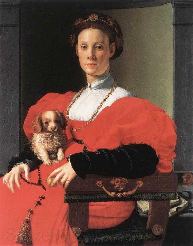 BRONZINO, Agnolo Portrait of a Lady with a Puppy f