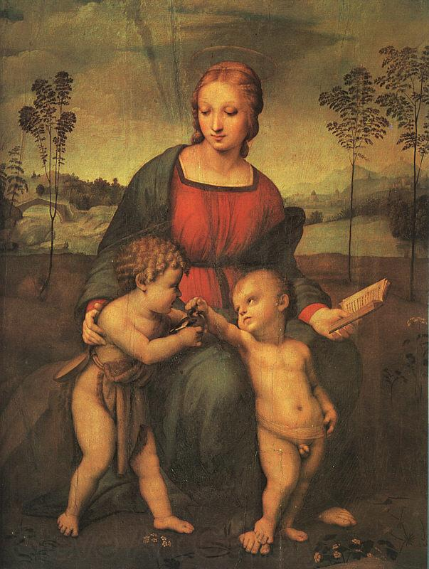 Raphael Madonna of the Goldfinch