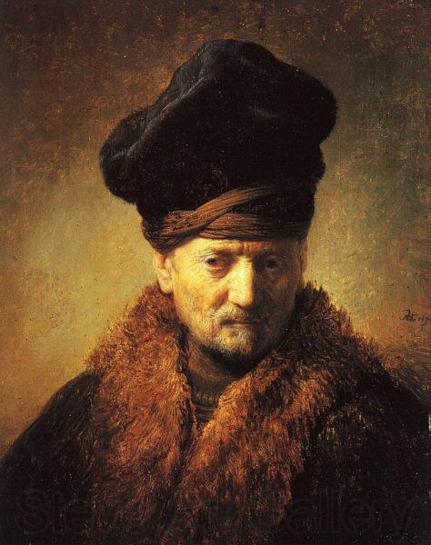 Rembrandt Bust of an Old Man in a Fur Cap