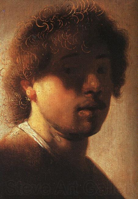 Rembrandt Self Portrait  ffcx