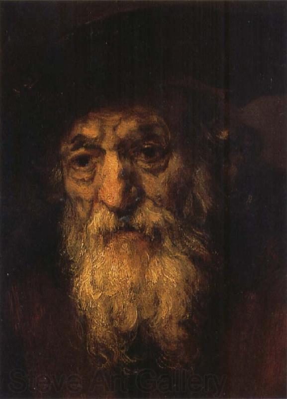 REMBRANDT Harmenszoon van Rijn Portrait of an Old Jew