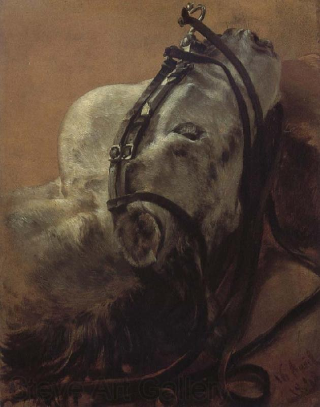 Adolph von Menzel Euine Study,Recumbent Head in Harness