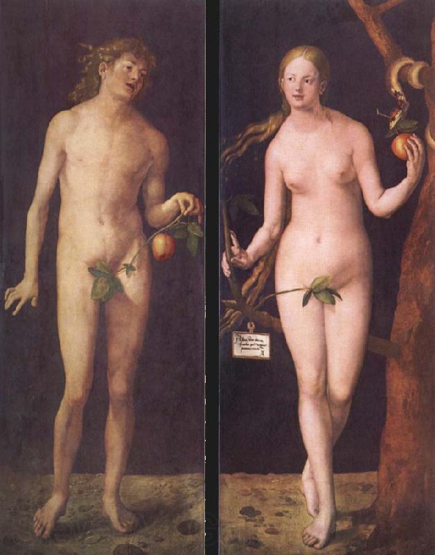 Albrecht Durer Adam And Eve Albrecht Durer Adam And Eve