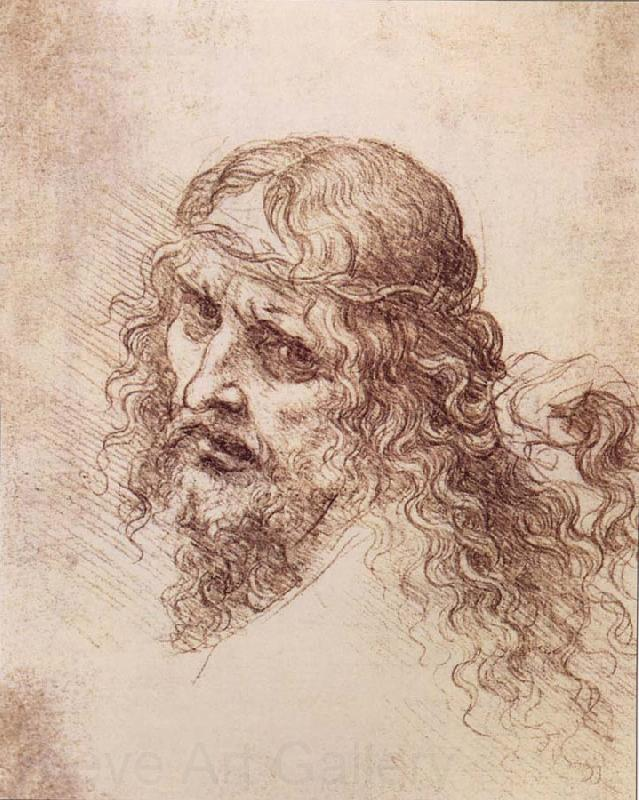 LEONARDO da Vinci Head and shoulders Christs