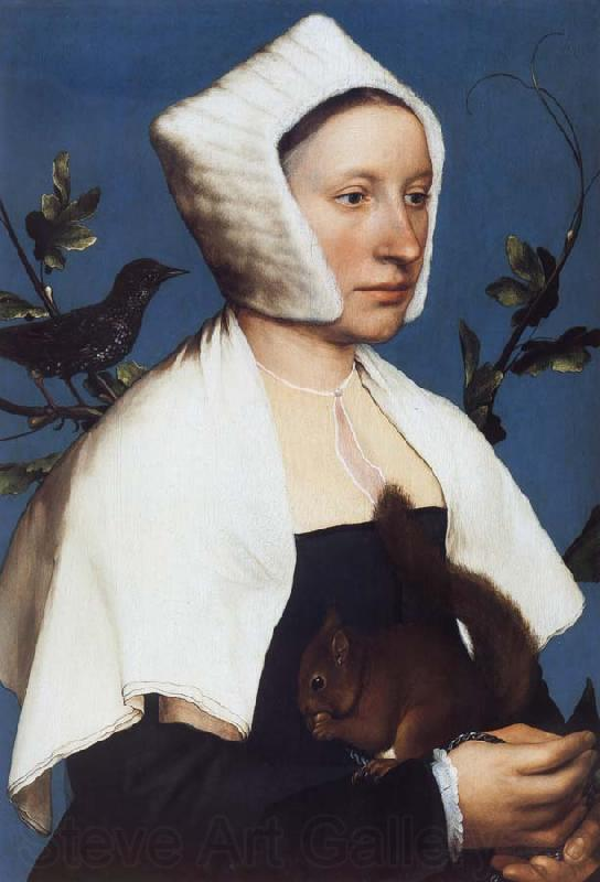 Hans holbein the younger Portrait of a Lady with a Squirrel and a Starling