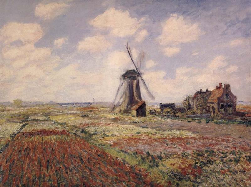 Claude Monet A Field of Tulips in Holland