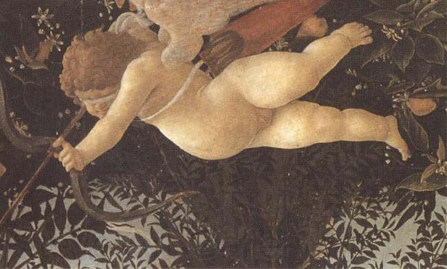 Sandro Botticelli Detail of Cupid with eyes bandaged,shooting an arrow at Chastity