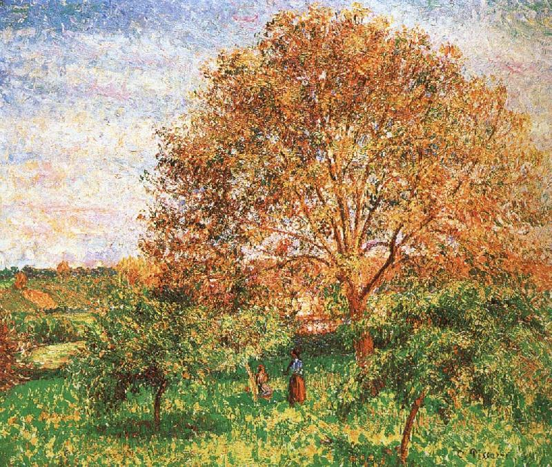 Camille Pissarro Red sky under the apple tree