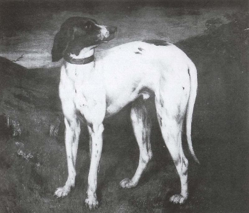 Gustave Courbet Dog
