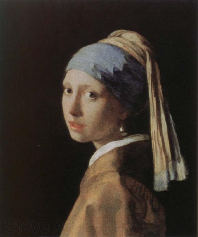 Jan Vermeer girl with apearl earring