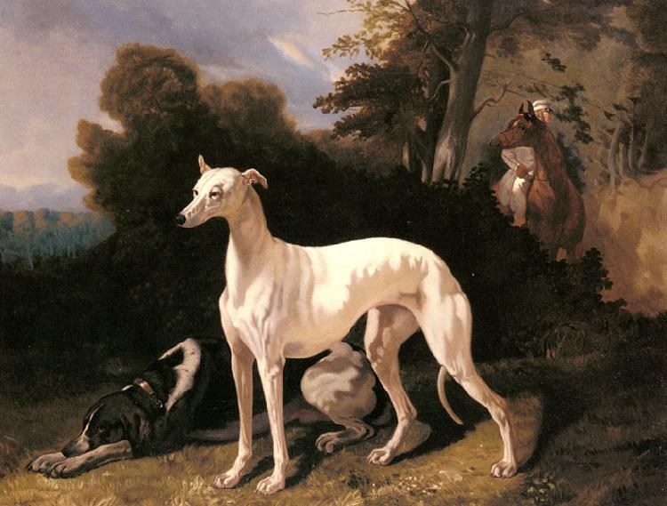 Alfred Dedreux A Greyhound In An Extensive Landscape