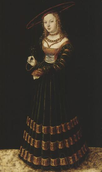 Lucas Cranach the Elder Portrait of a girl with forget-me-nots.