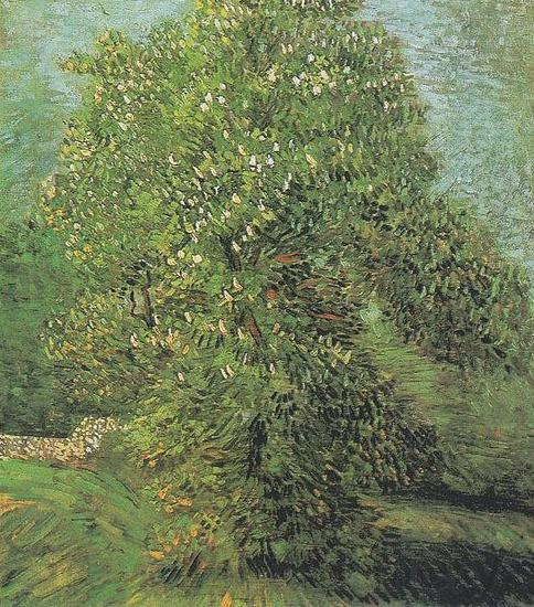 Vincent Van Gogh Blossoming Chestnut Tree