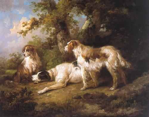 George Morland Dogs In Landscape - Setters Pointer