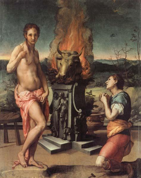 Agnolo Bronzino Pygmalion and Galatea
