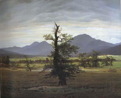 Caspar David Friedrich Landscape with Solitary Tree (mk10)
