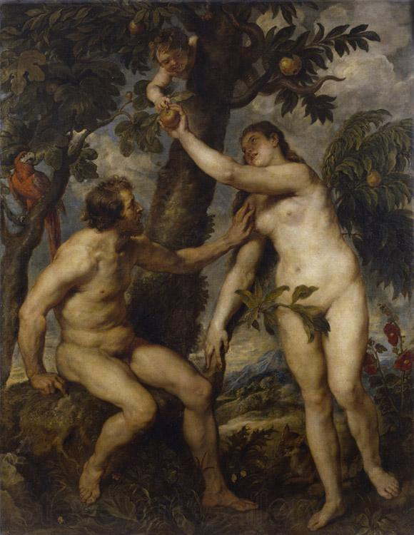 Peter Paul Rubens Adam and Eve (df01)