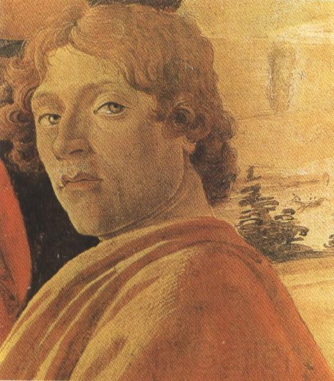 Sandro Botticelli Young man in a Yellow mantle (mk36)