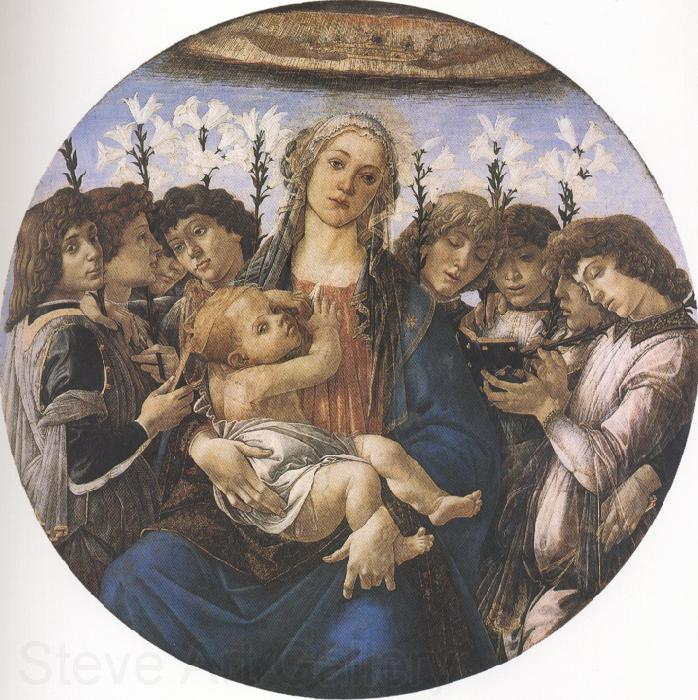 Sandro Botticelli Madonna and Child with eight Angels or Raczinskj Tondo (mk36)