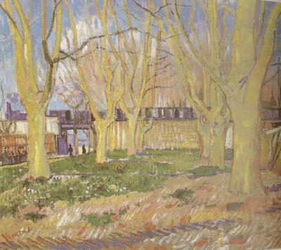 Vincent Van Gogh Avenue of Plane Trees near Arles Station (nn04)