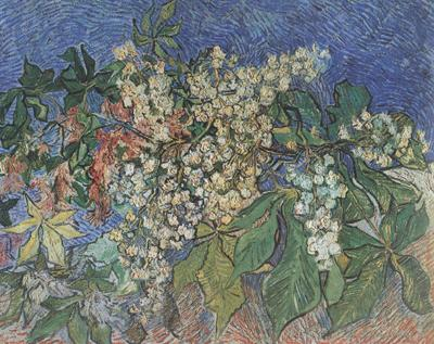 Vincent Van Gogh Blossoming Chestnut Branches (nn04)