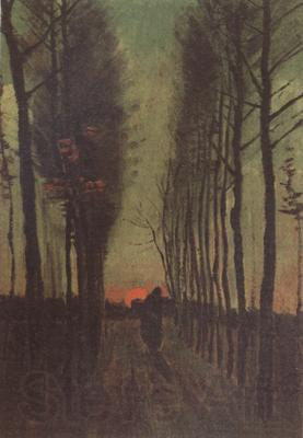 Vincent Van Gogh Avenue of Poplars at Sunset (nn04)
