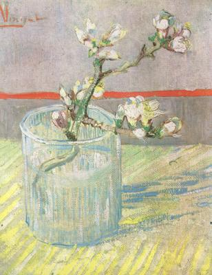 Vincent Van Gogh Blossoming Almond Branch in a Glass (nn04)